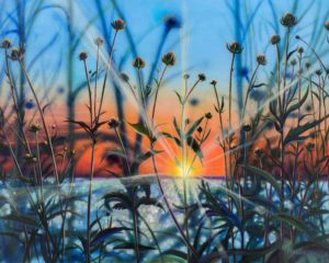 setting sun shinning through shoreling plants deep blues and oranges and greens