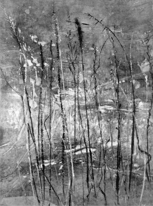 Grassland in Black & White ©LindaSnouffer,BotanicalPrintmaker