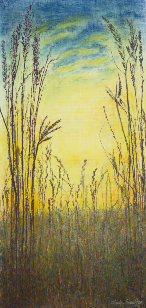 Break of Day ©Linda Snouffer, Botanical Printmaker