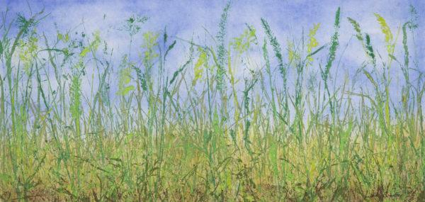 Spring Meets Summer ©Linda Snouffer, Botanical Printmaker