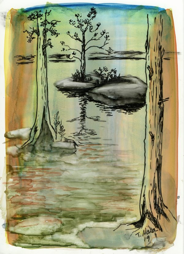 painting of trees and island