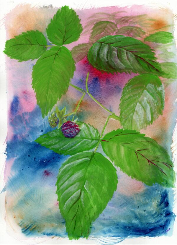 raspberry plant painting