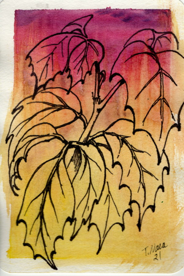 black line drawing of leaves on red and orange background