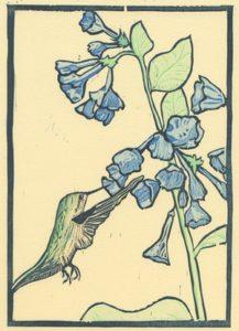 Hummingbird woodcut